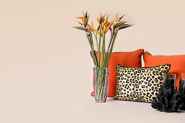 Lifestyle image with orange scatter cushion, leopard print scatter cushion and Classic Faux Coral Hurricane Lamp